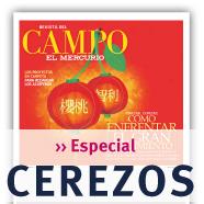 Especial Cerezos de Revista del Campo