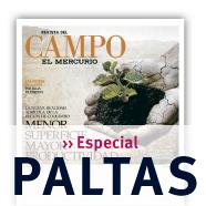 Especial Paltas de Revista del Campo