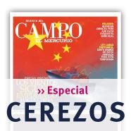 Especial Cerezos Revista Del Campo