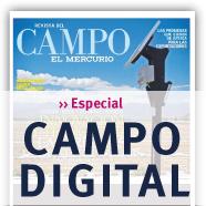 Especial Campo Digital Revista Del Campo