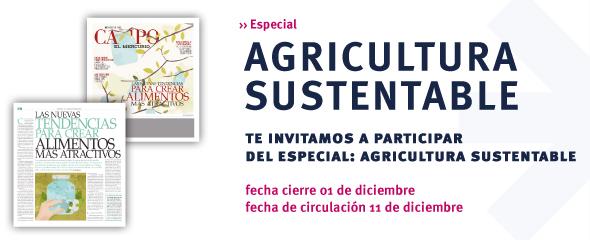 campo_agricultura-1