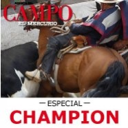 Especial Champion Revista Domingo